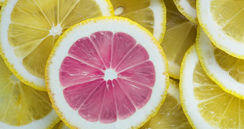 photo of yellow lemon slices with one pink lemon slice that stands out from the rest.