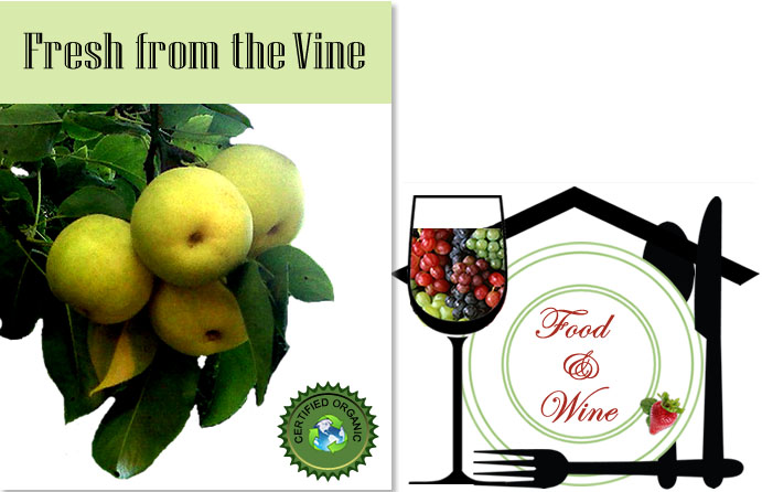 photo of a Fresh from the Vine postcard, an Ariana La Seva logo, and a Food and Wine image constructed of plates, eating utensils, wine glass and grapes.